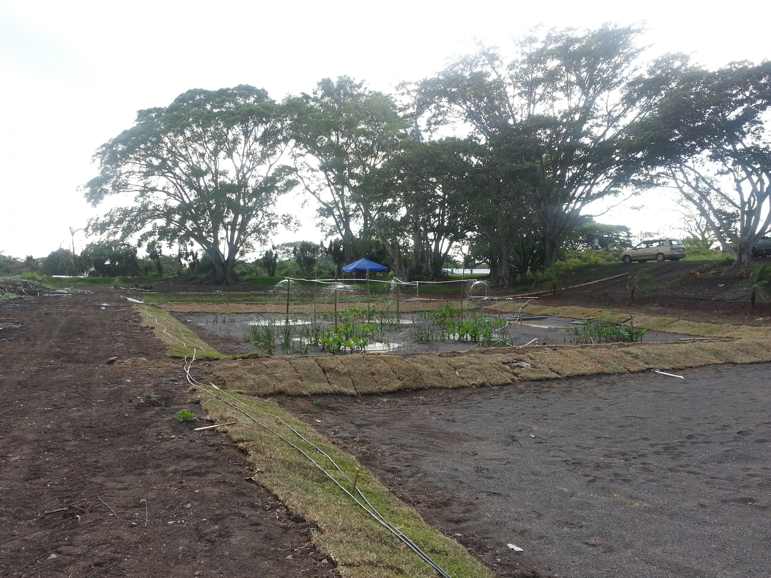 Photo of a new wetland waste treatment system set up, bare earth and little vegetation in the center