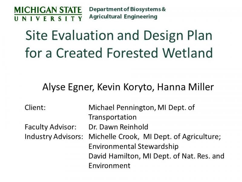 2011 Forested Wetlands Senior Design Team