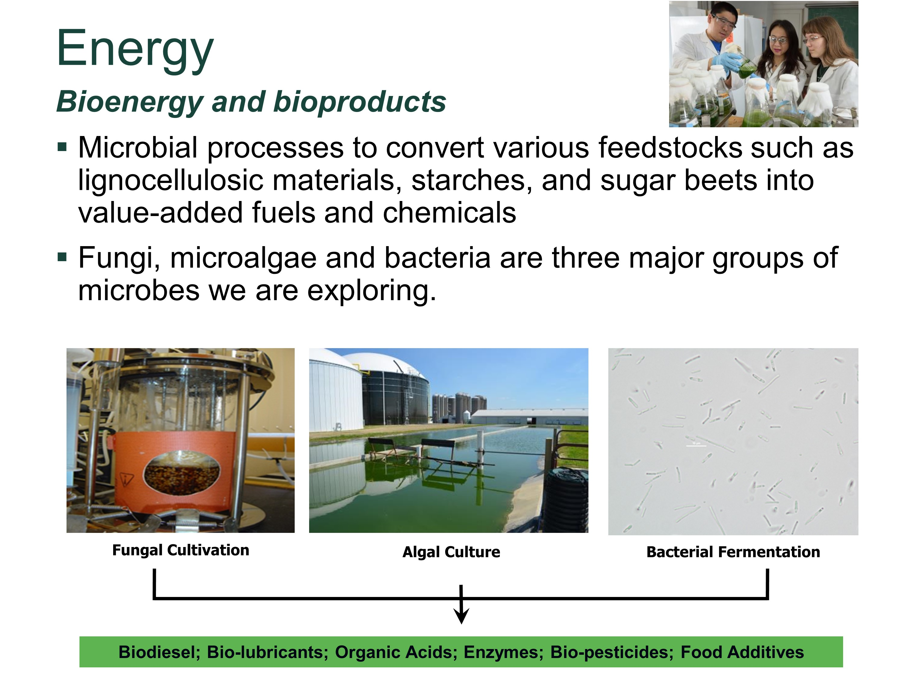 Bioenergy and bioproducts