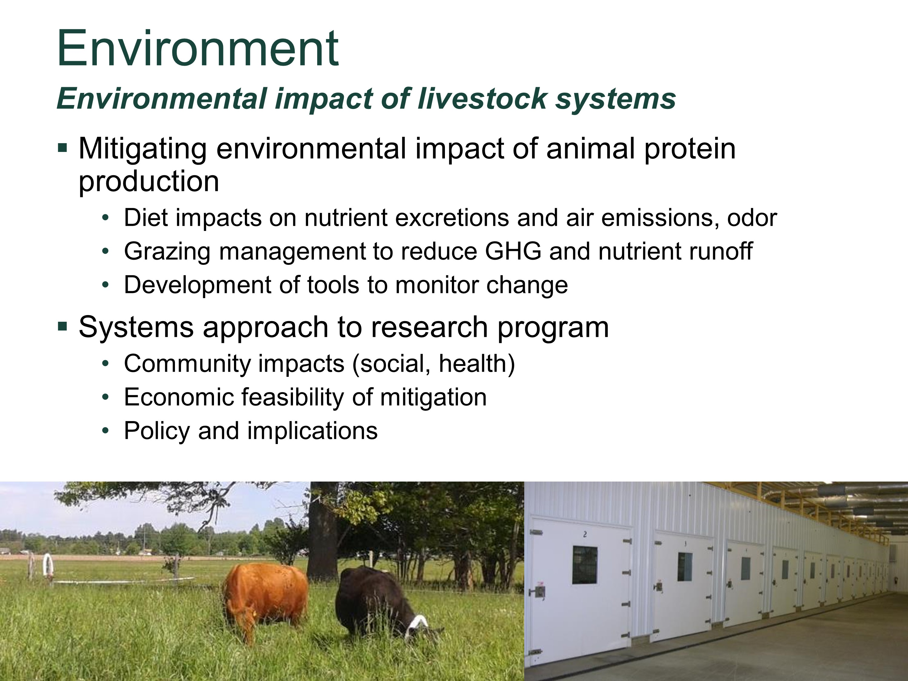 Environmental impact of livestock systems