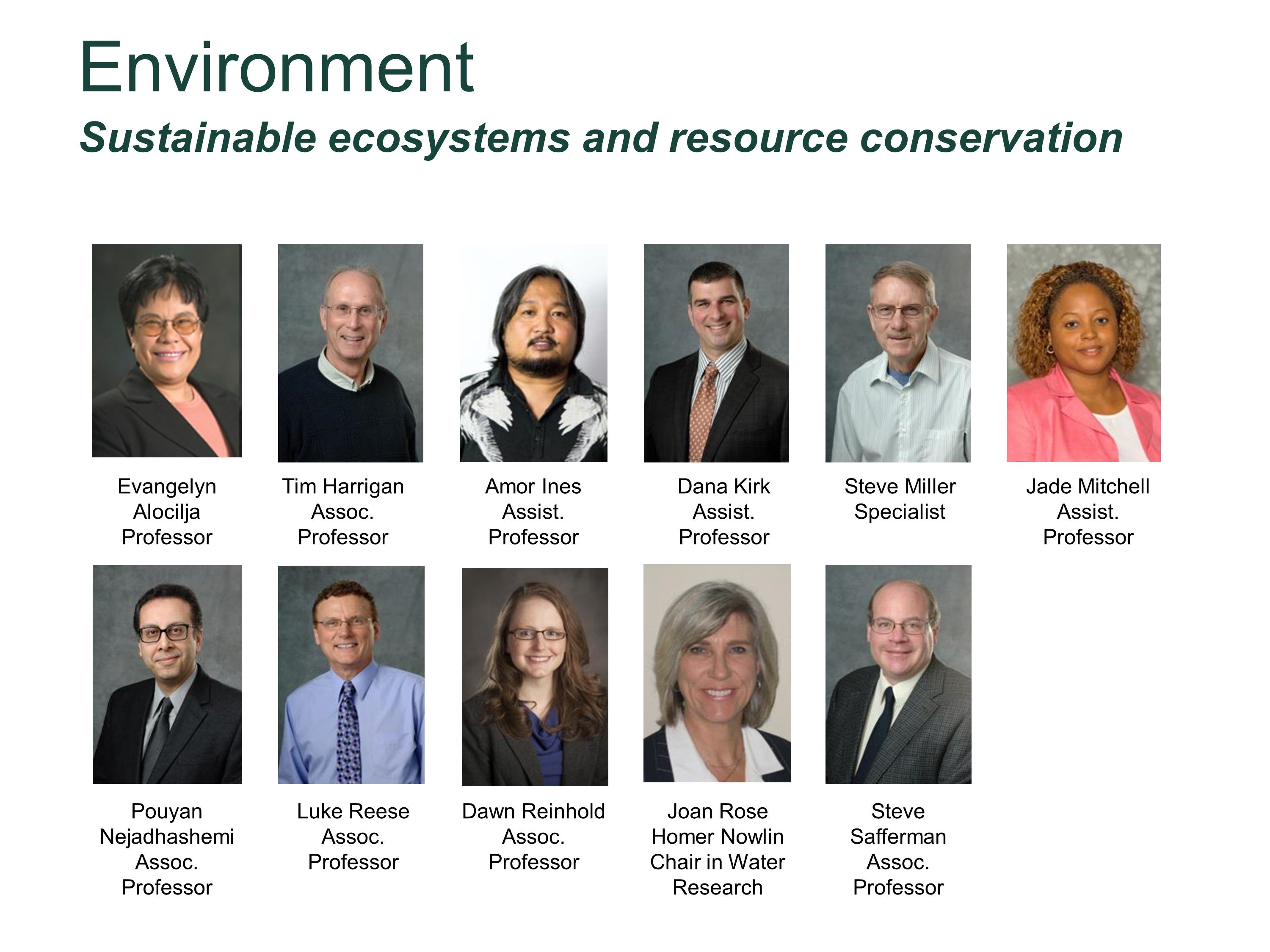 Sustainable Ecosystems Faculty