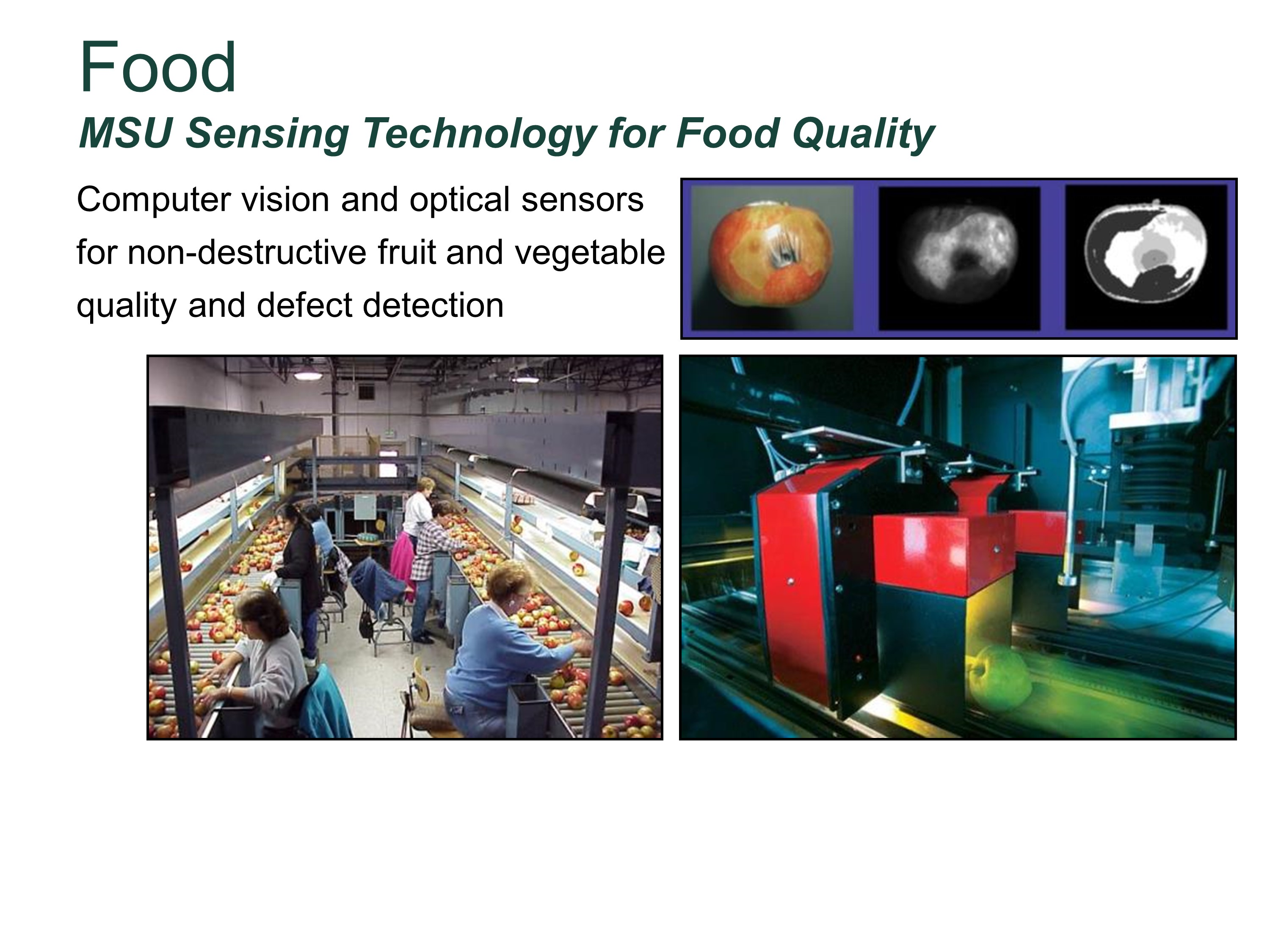 Photo of MSU Sensing Technology for Food Quality