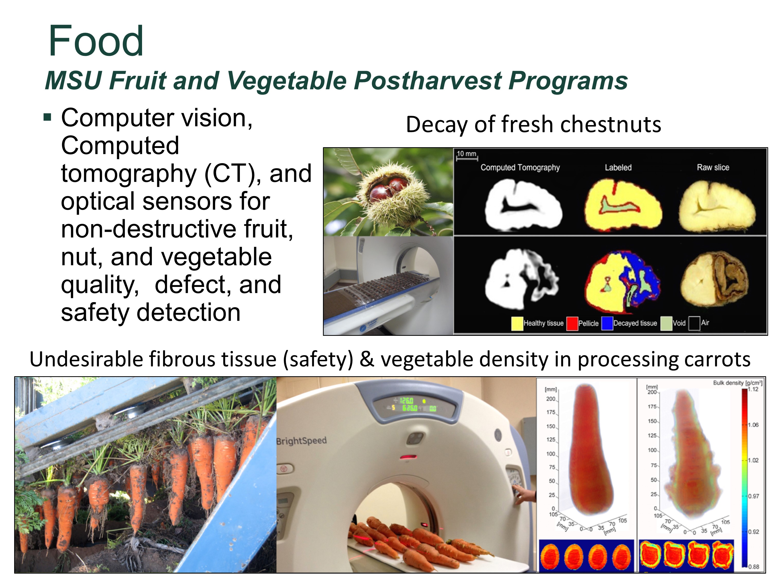 Photo of computer vision, computed tomography (CT), and optical sensors for non-destructive fruit, nut, and vegetable quality,  defect, and safety detection