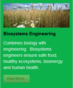 Biosystems & Agricultural Engineering website