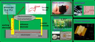Ionic Liquid Based Miniaturized Electrochemical Gas Sensor