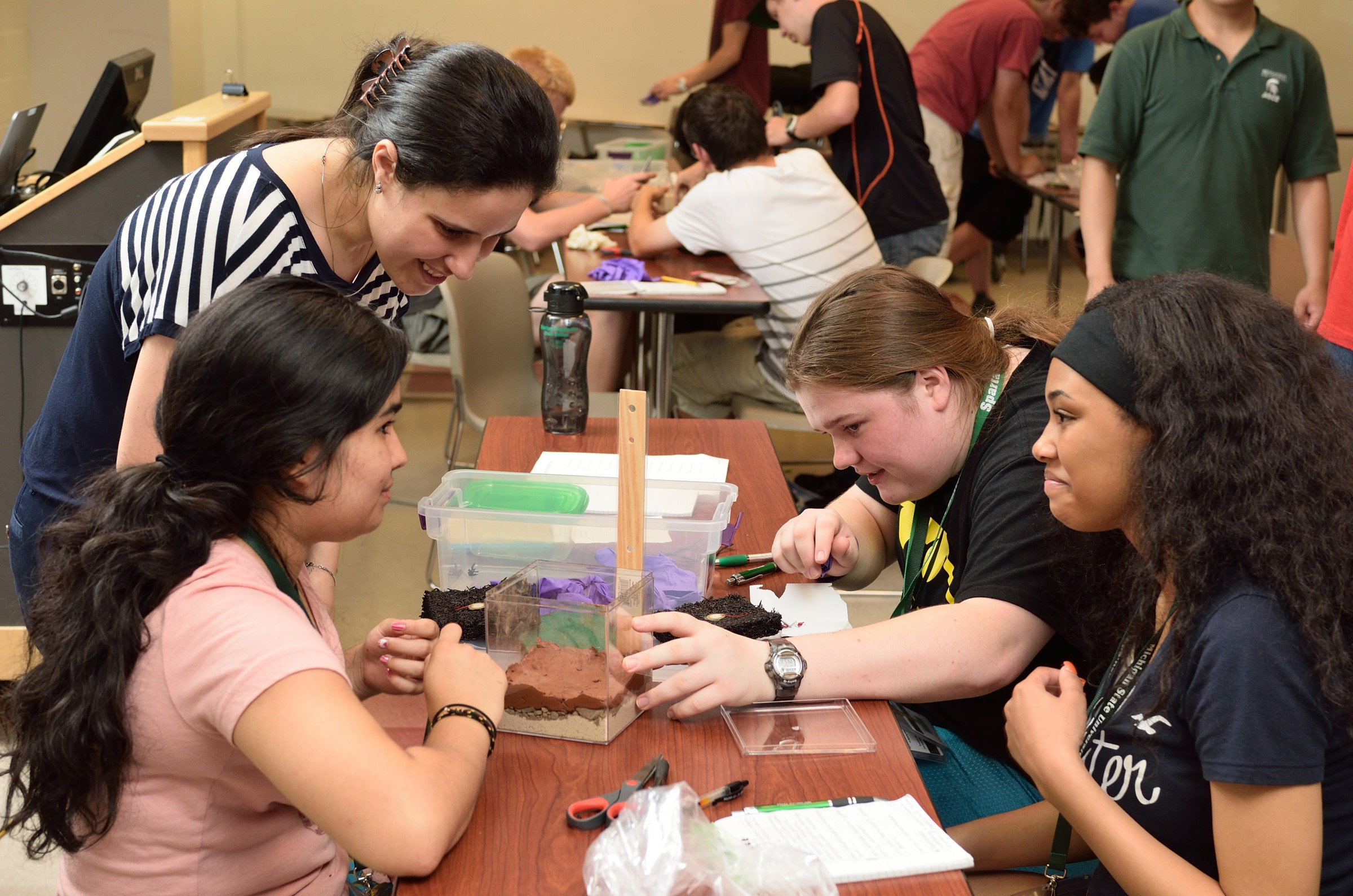 When Imen Zaabar of Michigan State University isn't doing research as an assistant professor of civil engineering, she helps students build a road in a box to help them explore engineering design.