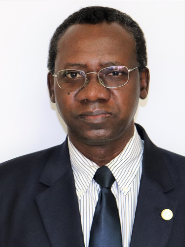 Photo of Dr. Alioune Fall