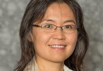 Yue Qi named first associate dean for inclusion and diversity in College of Engineering.
