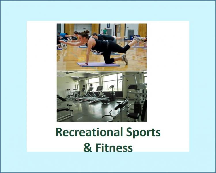 MSU Recreational Sports & Fitness